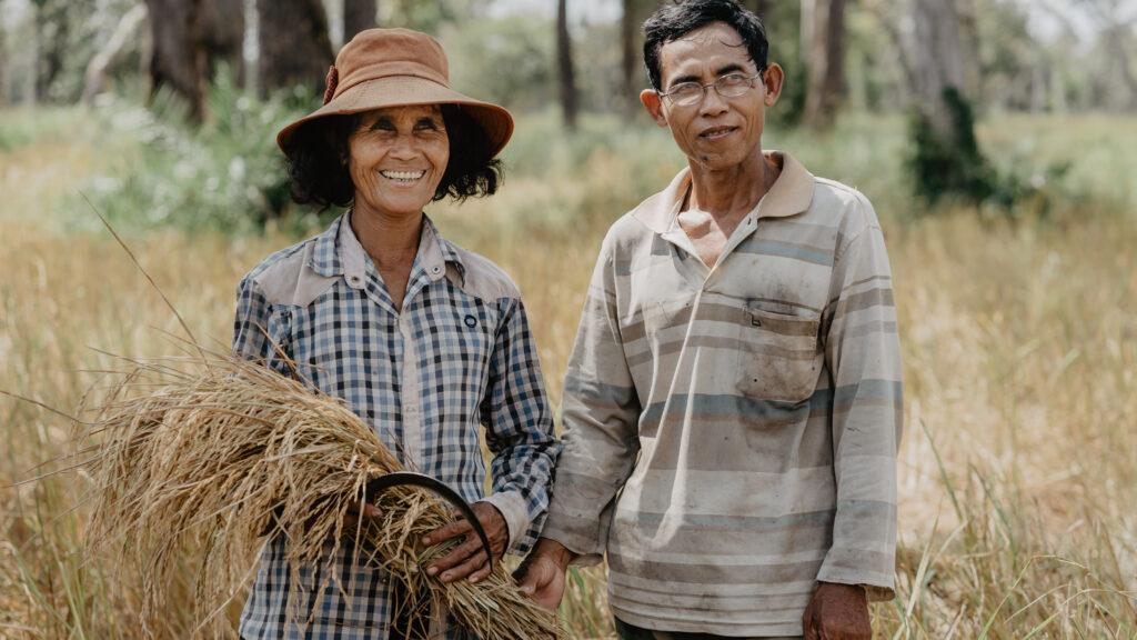 IBIS Rice: Dryland Farming as a Way to Avoid Inorganic Arsenic in Rice