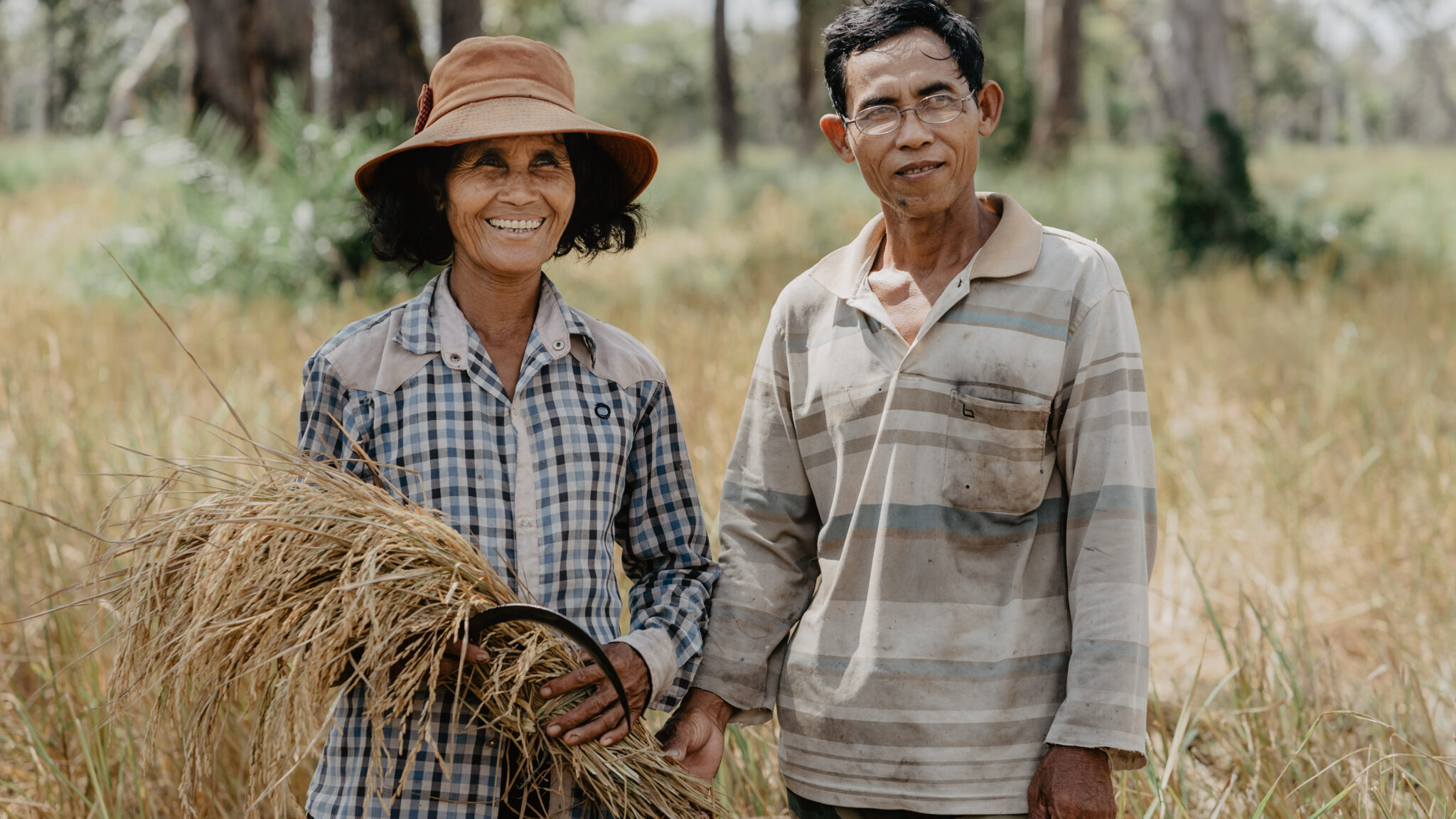 Inorganic Arsenic in Rice: How Dryland Rice Farming and Veganic Cultivation Help